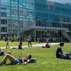 Students lounge on the grass in the sunshine